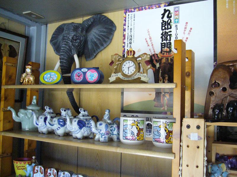 象コレクション