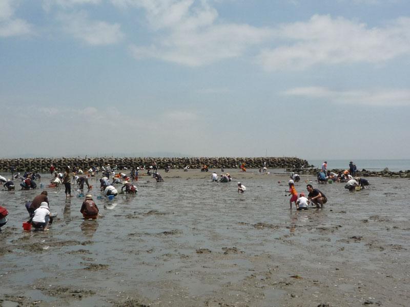 潮干狩りツアー2010 047